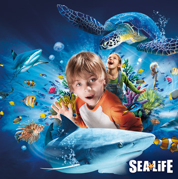 20% Off SEA LIFE Aquariums Single-Day Tickets