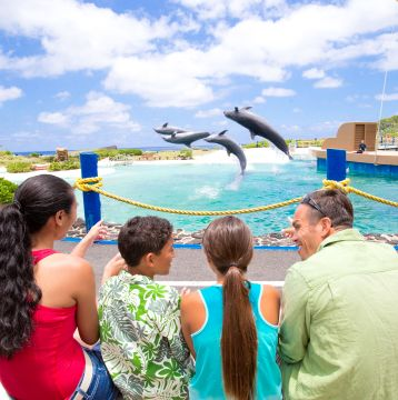15% Off Up to 4 General Admission Tickets to Sea Life Park, Hawaii's #1 Marine Park